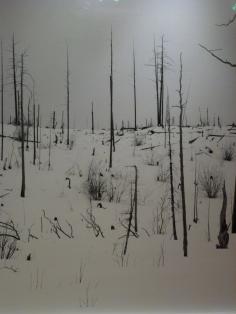 Night + Fog di Darren Almond
