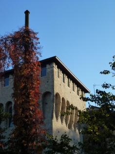 Torre con rampicante