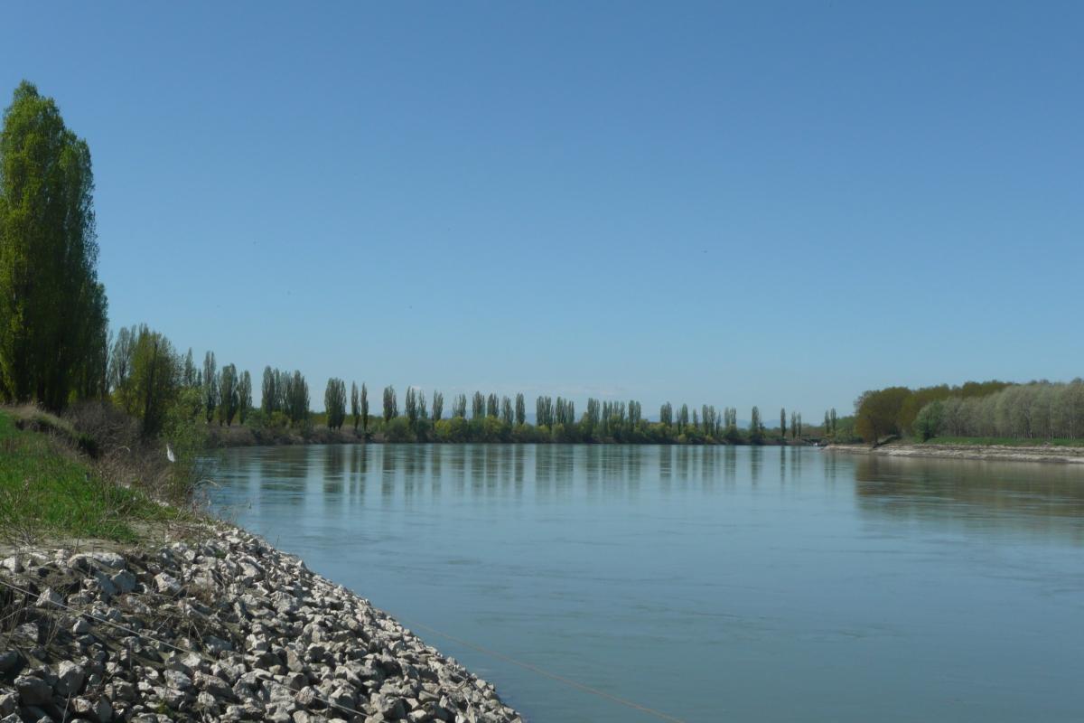 Il grande vecchio... il fiume Po a Sacca (Pr)