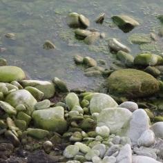 Pietre sul fiume