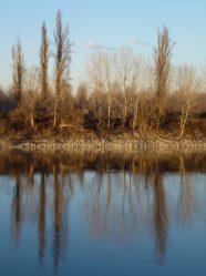 fiume-po-mezzani-jpeg