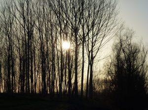 tramonto-po-jpeg