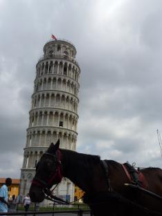la torre di pisa e il cavallo